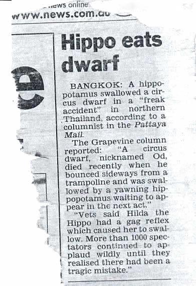 damn-hippo.jpg