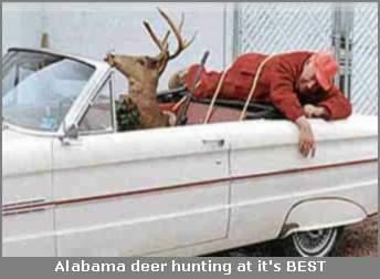deer_hunting.jpg