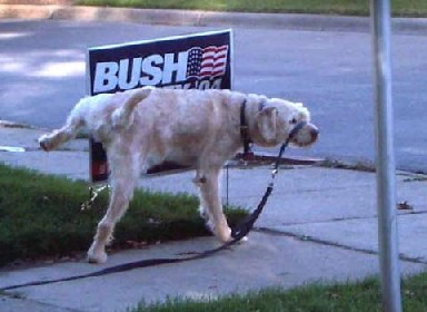 piss_on_bush.jpg